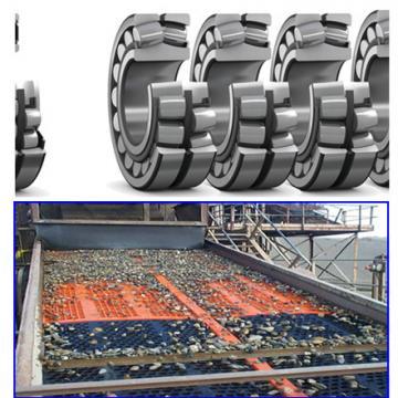 VSA250955-N BEARINGS Vibratory Applications  For SKF For Vibratory Applications SKF